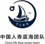 中国人寿蓝海团队